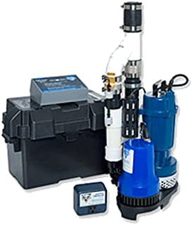 Glentronics Ps-C22 Pro Series Pair Of Pumps