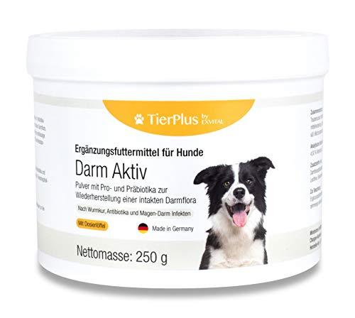 EXVital TierPlus Darm Aktiv Pulver für Hunde, Probiotika & Präbiotika für eine gesunde Darmflora- Nach Durchfall, Wurmkur, Antibiotika & Magen- Darm