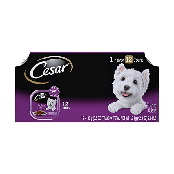CESAR Soft Wet Dog Food Classic Loaf in Sauce Filet Mignon Flavor Multipack (24)...