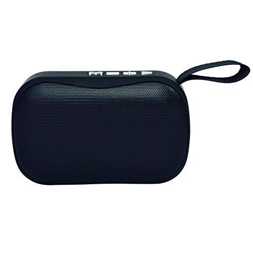 Elbe Alt-N10-BT - Altavoz Bluetooth Mini con Función Manos Libros, Altavoz Compacto, Radio Autoscan, USB Micro SD, Batería Litio Recargable 300 Mah, Color Negro