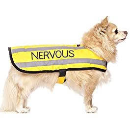 NERVOUS (Give Me Space) Yellow Colour Coded S M L Reflective Waterproof Fleece Lined Warm Dog Coats PREVENTS Accidents By Warning Others Of Your Dog In Advance