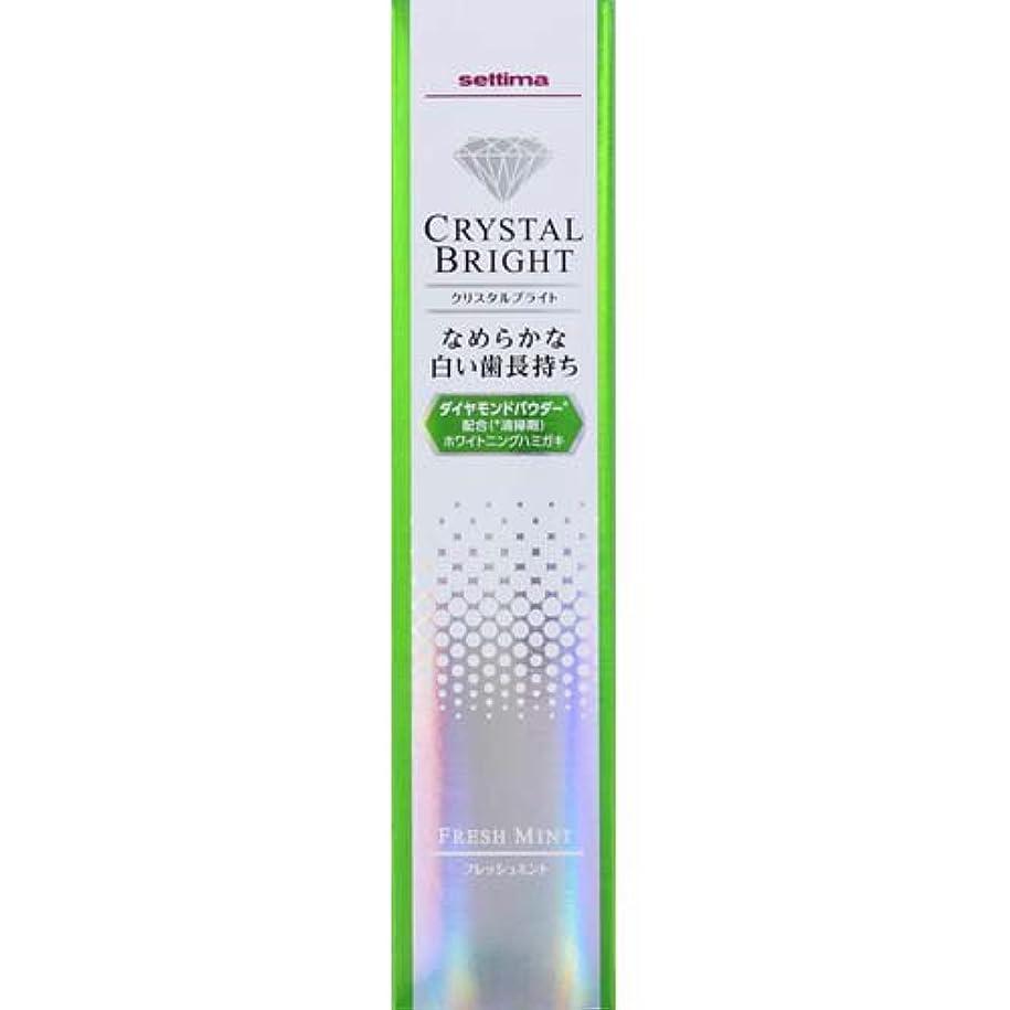 電気陽性うなずく膜セッチマ クリスタルブライト ハミガキ フレッシュミント 40g