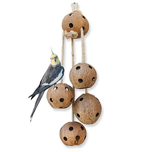 Pet Magasin Hand-Made Heavy Duty Bird Toys for Large Birds Parrot Cage Bite Toys African Grey Macaws Cockatoos