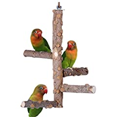 DESIGN IDEA --This bird perch design idea is from wild world, in the wild the little birds always stand on the tree branch to talk or play with each other,so we want our caged parrots to share such wonderful moment like wild birds. as you can see our...