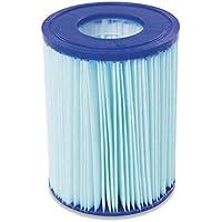 Bestway 58503 - Set de Dos Filtro de Agua Anti-Microbial Tipo II para Depuradora de Cartucho 2.006 y 3.028 litros/hora