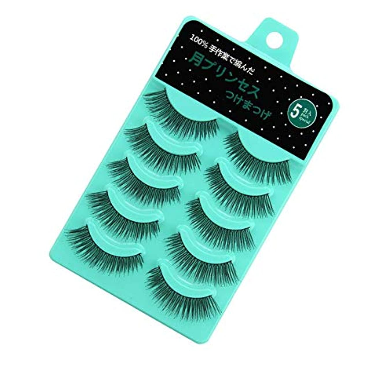 HNYYZL つけまつげ ミンクつけまつ毛 10ペア グラマラスボリュームアイラッシュ ふんわりロングまつ毛 極薄 濃密 超軽量 高級繊維
