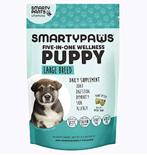 SmartyPants Dog Supplement Chew