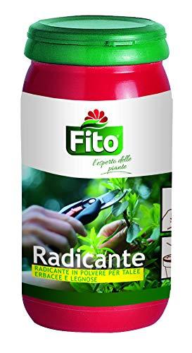 Fito Radicante, Verde, 6.30x6.30x12.5 cm