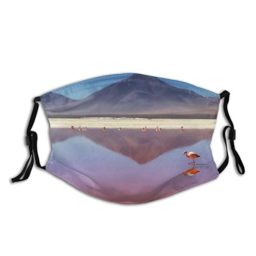 FOURFOOL Face Cover Nature Animal Bird Flamingo Wild Wildlife Africa Mountain Landscape Balaclava Unisex Reusable Windproof Mouth Bandanas Outdoor Camping Motorcycle Running Neck Gaiter With 2 Filters