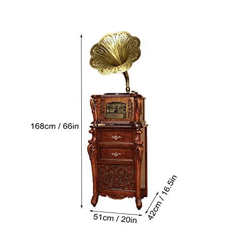 GOM Radio, 3 snelheden platenspeler, ingebouwde stereo-luidsprekersystemen, RCA-uitgang, Bluetooth-verbinding, CD-speler, USB-poort