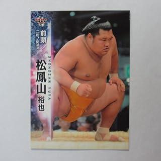 BBM2015大相撲カード【レギュラーカード】No.29松鳳山裕也/前頭