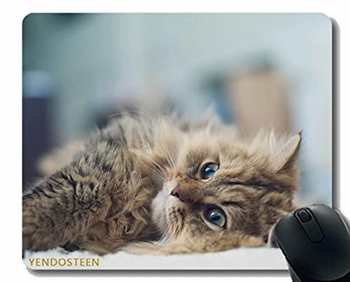 Spersonalizowana podkładka pod mysz, Cat Leies Grare Fluffy 72666 Podkładka pod mysz