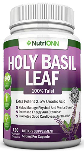 Holy Basil Leaf Extract - 500mg - 2.5% Ursolic Acid - 120 Vegan Capsules - Premium Tulsi Leaf Powder Supplement - Powerful Adaptogen for Stress and Anxiety Management - Supports Mood and Sleep
