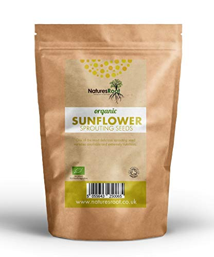 Natures Root Bio Sonnenblumenkerne 1kg - Sonnenblumenkeime | Sprossen | Nicht GVO | Mikrogrün | Keimsprossen