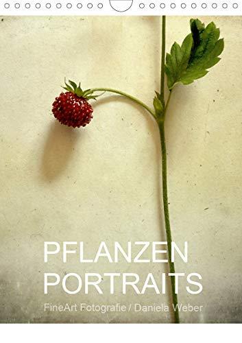 Pflanzenportraits FineArt Fotografie Daniela Weber (Wandkalender 2021 DIN A4 hoch): Fotografien im Stil eines klassischen Herbariums auf besondere Weise interpretiert (Monatskalender, 14 Seiten )