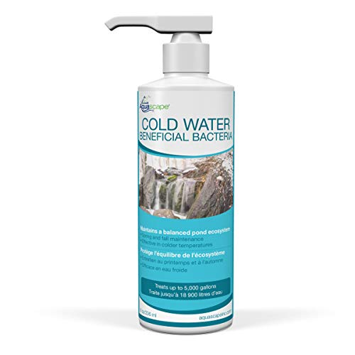 Aquascape 98892 Cold Water Beneficial Bacteria for Pond and Water Features, 8-Ounce