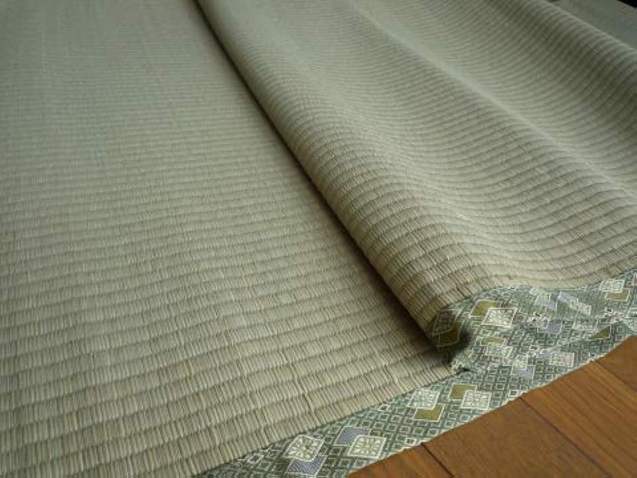 詩報復するゲートい草上敷きカーペットござ五八間8畳 352×352cm 純国産日本製 知床