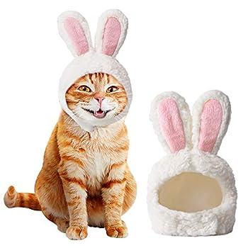 Ducomi Oreilles pour Chat en forme de Lapin, Accessoire de déguisement/perruque pour Chat pour Carnaval, Halloween et Pâques, Taille réglable avec Velcro