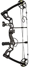 Best carbon rage compound bow Reviews