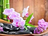 TYH Rompecabezas de orquídeas para Adultos Rompecabezas de 300 Piezas para Adultos Rompecabezas de Madera de 300 Piezas 300 Piezas -
