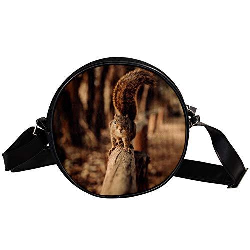 Runde Crossbody-Tasche kleine Handtasche Damen Mode Schultertaschen Messenger Bag Canvas Tasche Hüfttasche Zubehör für Frauen - Eichhörnchen gehen auf Zaun