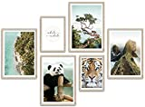 ARTFAVES® Poster Set - ASIAN WILDLIFE | Wanddeko