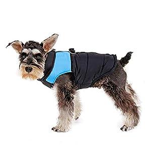 IREENUO Pet Dog Vêtements Imperméable Veste Chaude avec D-Ring Chaud Rembourré Manteau Poitrine Protecteur Hiver Harnais Gilet Veste Chiot Vêtements Gilet De Ski