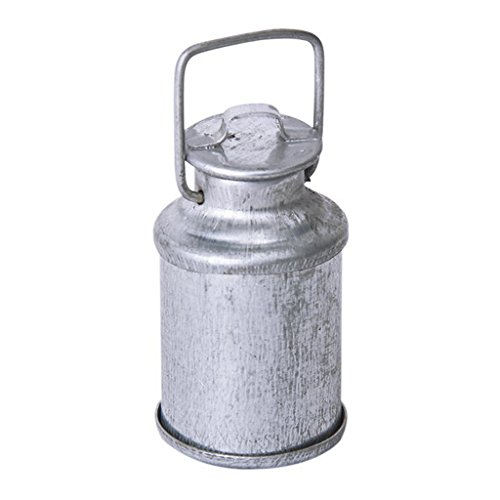 TOOGOO(R) Vintage maison de poupee miniature 1/12 cruche de lait avec couvercle bouteille