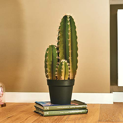 Catral Cactus Organo, Verde, 64 Cm