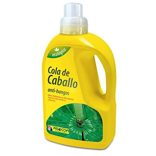 ASOCOA - Fungicida Natural Cola de Caballo, Equisetum Arvense L, Tratamiento de Hongos Oidio y Mildu
