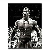 Suuyar Arnold Schwarzenegger Bodybuilding Poster
