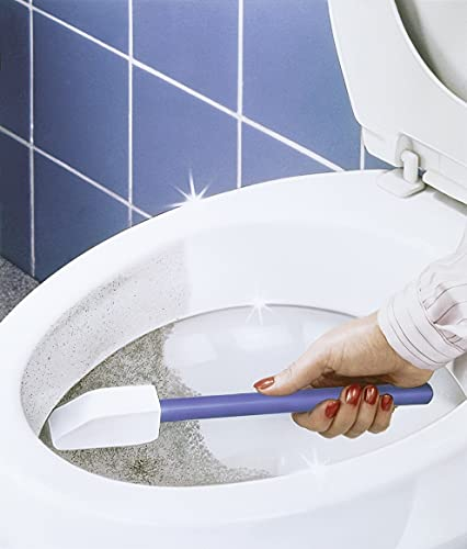 WENKO Toilettenreiniger Spezial - Bimsstein, ohne Chemie, Holz, Blau
