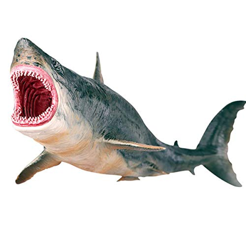 Gemini&Genius Realistic Megalodon Sea Monster Ocean Animal Toy Figurine Model Action Figure Hard Rubber Ocean Sea Life Marine Animals Educational and Role Play Toys for Kids(Megalodon Shark)