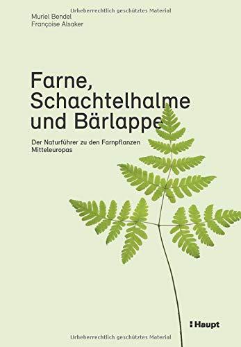 Farne, Schachtelhalme und Bärlappe: Der Naturführer zu den Farnpflanzen Mitteleuropas