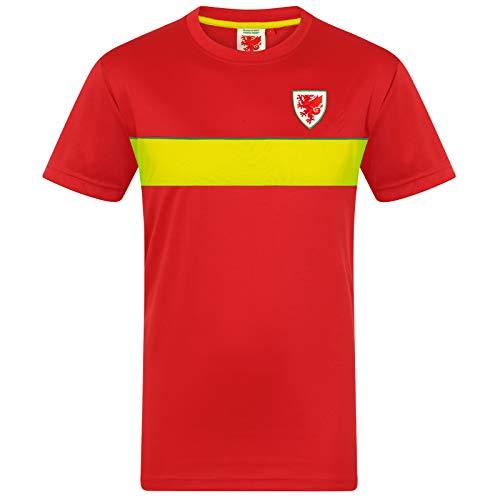 Wales FAW - Jungen Trainingstrikot aus Polyester - Offizielles Merchandise - Geschenk für Fußballfans - 12-13 Jahre