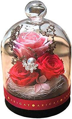 プリザーブドフラワー グラスドーム プチ 枯れないお花 お祝い プレゼント 演出お手伝い インテリア (ピンク)