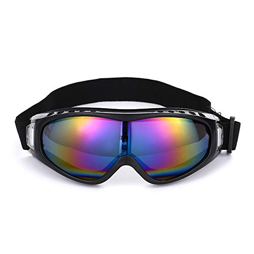 Tree-es-Life Gafas de esquí para Motocicleta al Aire Libre, Tabla de Snowboard para Hombres y Mujeres, Gafas de esquí antivaho, máscara de Nieve, Gafas de Skate, Gafas de esquí Coloridas