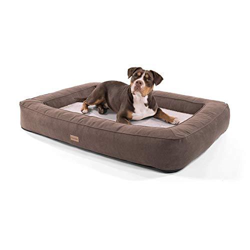 brunolie Bruno extra großer Hundekorb, waschbar, hygienisch und rutschfest, orthopädisches Hundebett mit Kissen und atmungsaktivem Obermaterial in Beige, Größe XL (120 x 85 x 17 cm)