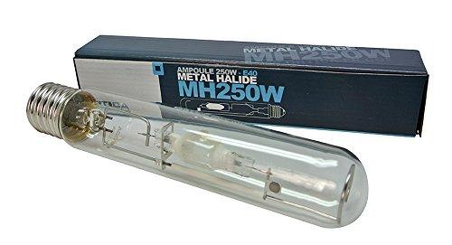 metall halogen lampe