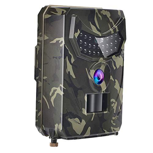 perfeclan 12MP 4032 * 3024 wildcamera jachtcamera 120 graden groothoek infrarood nachtzicht waterdicht IP56 bewakingscamera voor buiten, tuin - B, zoals beschrijving