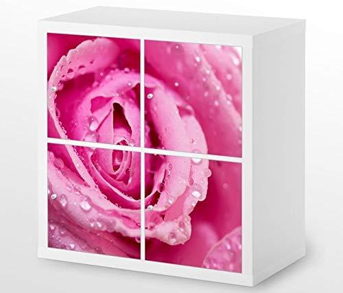 Set Möbelaufkleber für Ikea Kallax 4 Fächer/Schubladen rosa Rose Blume Kat7 Tau Tropfen Aufkleber Möbelfolie sticker (Ohne Möbel) Folie 25H551