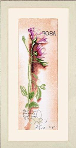 Lanarte Zählmusterpackung Rose Botanisch Kreuzstichpackung, Baumwolle, Mehrfarbig, 20 x 60 x 0.3 cm