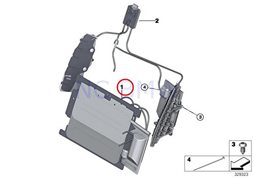 BMW Genuine Lumbar Support Pad With Pump