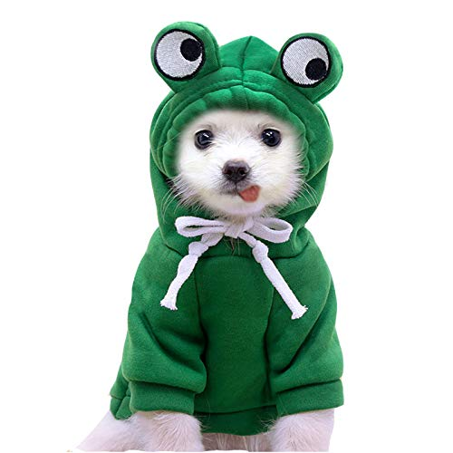 Pet Clothes, Dogs Hooded Sweatshirt Fruit Warm Coat Sweater Cold Weather Costume for Puppy Small Medium Large Dog (S, Green Frog)
