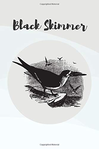 Black Skimmer Bird Journal Notebook: Blank-Lined Journal Diary Notebook to record your thoughts and keep you organized.