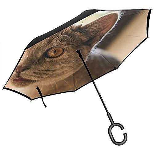 Katze süße süße kleine Tier Haustier Fell Reverse Umbrella Double Layer Inverted Regenschirme für Auto Regen im Freien mit C-förmigen Griff