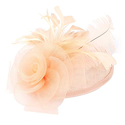 Fascinators Hat for Women Wedding Hat Cocktail Tea Party Headwear Flower Mesh Feathers Hair Clip(Pink)