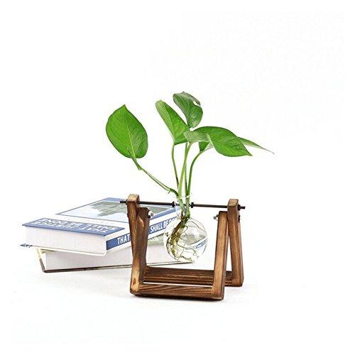 BulzEU Scindapsus houder - plant terrarium houten standaard glazen vaas houder hydrocultuur plant transparant vaas Scindapsus container Home Office Boek Shop creatieve decoratie (A)
