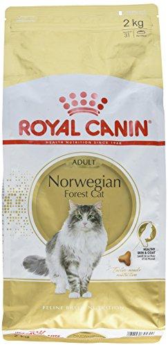 Royal Canin Comida para gatos Bosque De Noruega 2 Kg