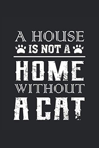 A House is not a Home without a cat: Storyboard Notebook